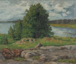 Elin Palmroos 1866-1940