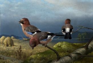 von Wright, Ferdinand (1822-1906)