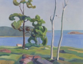 Ville Boijer-Poijärvi*