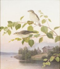 Ferdinand von Wright (1822-1906)