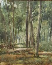 Hanna Bergh (1864-1890)
