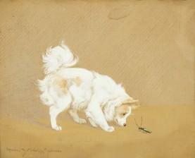 Istvanffy, Rainer Gabrielle (1877-1964), (HU)