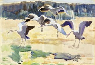 Segerstråle, Lennart (1872-1975)*
