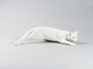 Figuriini, Kissa