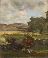 Thorsten Waenerberg