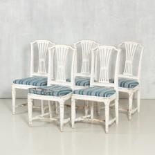 Tuoleja 5 kpl