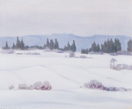 Wille Boijer-Poijärvi*