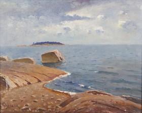 Viktor Nikkanen*