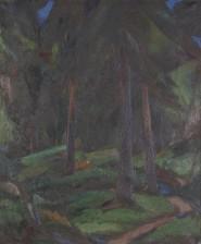 Olavi Ahlgren*