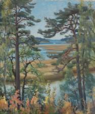 Helmi Biese (1867-1933)